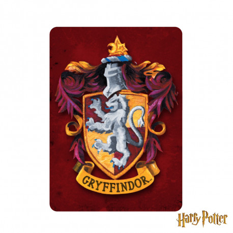 Magnet Métallique Harry Potter