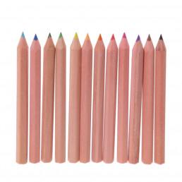 Mini Pot à Crayons de Couleur Dinosaures
