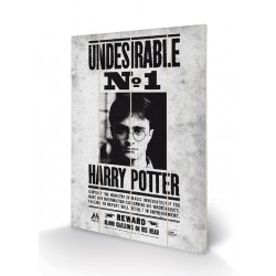 Panneau en Bois Harry Potter Undesirable n°1
