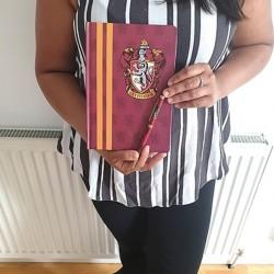 Set Harry Potter Gryffondor - Carnet de Notes et Stylo